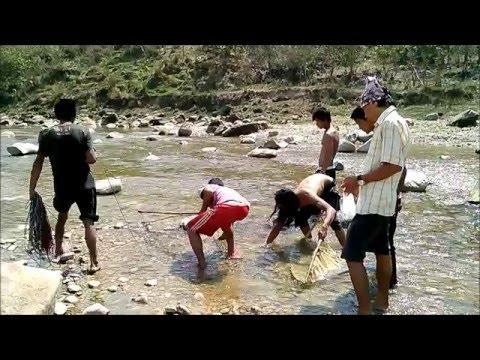 बिद्युतको प्र्रयोग गरि खोलामा माछा मारिदै l Fishing by Electricity on River l Makwanpur, Nepal