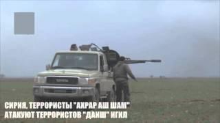Сирия бой между боевиками 'ахрар аш шам' и 'игил'