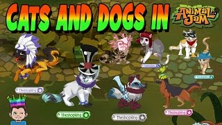 CATS AND DOGS IN ANIMAL JAM!