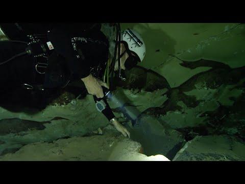 Outdoor Nevada | Devil's Hole Pupfish