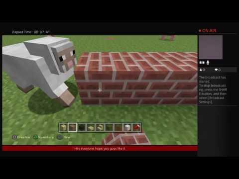 Minecaft:building a starbucks
