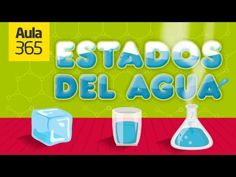 los-estados-del-agua- -videos-educativos-para-niños