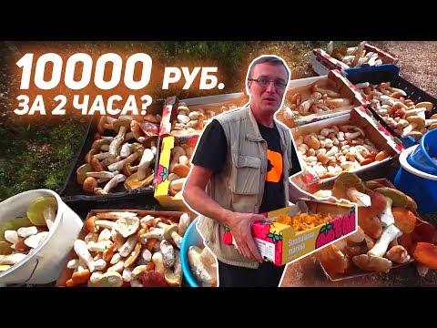 Главная страница_ру - ООО ВитВар