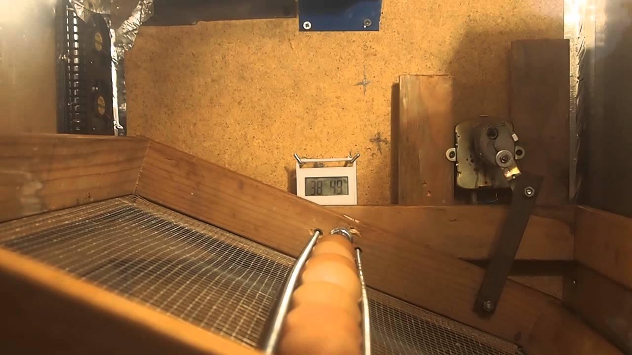 Volteo automatico casero incubadora gallinas youtube - Mecanismo para reloj de pared ...