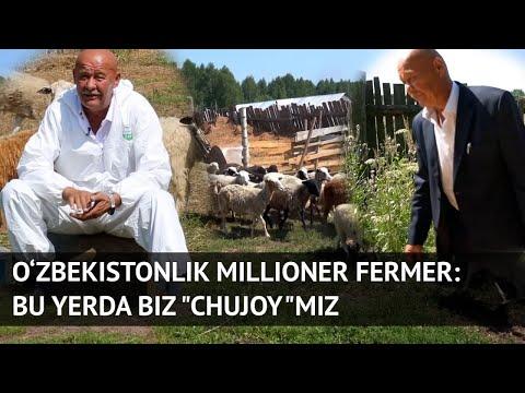 O'zbekistonlik millioner fermer hikoyasi - Видео онлайн