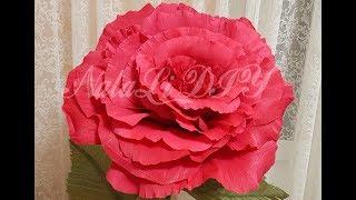 Роза из 1 рулона гофрированной бумаги  МК