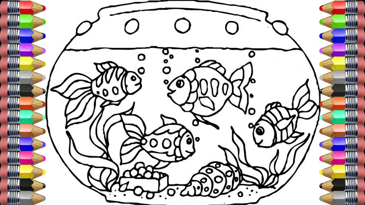 color learn the coloring pages for kids aquarium and fish coloring