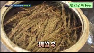 영암열매농원 솔잎발효액/솔잎효소