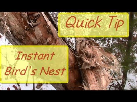 Quick Tip - Instant Bird's Nest