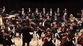 Скачать Густав Малер Симфония 1