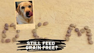 DCM (Heart Disease) and Dog Food Update