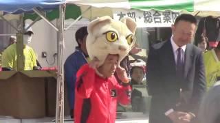 平成29年4月29日(土・祝) 10kmコース 午前9時スタート 完走記 http://...