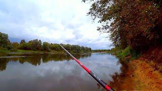 ВЕЧЁРКА на реке Осенняя рыбалка на джиг Щука на спиннинг