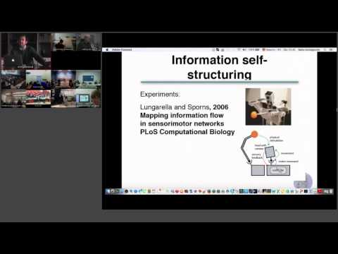 ShanghAI Lectures 2014 – Lecture 9: Towards a Theory of Intelligence