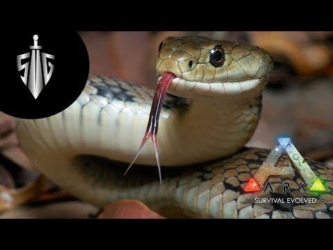 Cennet Bahçesinde Yılan  I  Ark Survival Evolved #24