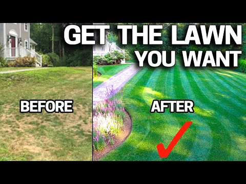 How to FIX an UGLY Lawn with RESULTS - Step by Step for Beginners EASY