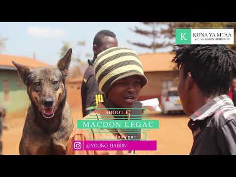 mbwa-wa-maajabu-mbwa-wa-mungu-{-dog-of-jahh-}-kona-ya-mtaa-@young_babon
