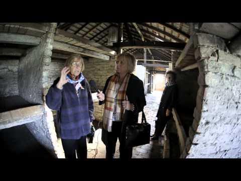 Wywiad z Ocalałymi z obozów w Auschwitz i Auschwitz-Birkenau
