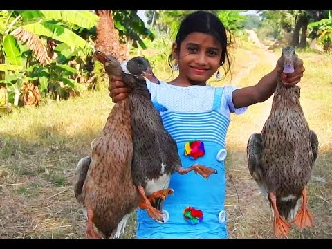 ᴴᴰ Whole Ducks meat curry spicy recipes in traditional method cooking in village
