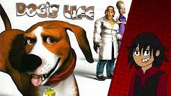 Pelataan! Koiran Elämää
