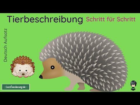 Berlin im Mittelalter Aufsätze von YouTube · Dauer:  27 Sekunden  · 17 Aufrufe · hochgeladen am 26.11.2016 · hochgeladen von Carl Gaines