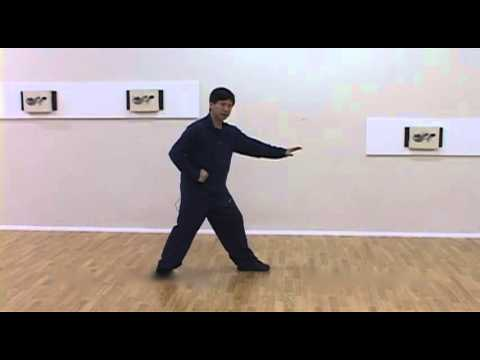 Yang Family Tai Chi Step Back Repulse Monkey to White Snake