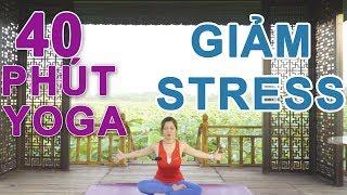 Bài tập Yoga đầy đủ - Hấp thụ năng lượng, thư giãn tâm trí và thanh lọc cơ thể cùng Nguyễn Hiếu Yoga