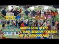 Lomba Murai Batu Kelas Utama Bersama Chania Bf Eo Ronggolawe Batam Kepri  Mp3 - Mp4 Download
