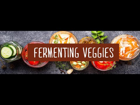 Making Fermented or Cultured Vegetables with Green Living Australia.