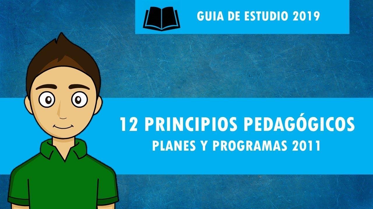 12 principios pedag gicos planes y programas 2011 youtube for Programa de cuarto