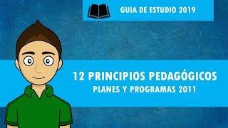 12 PRINCIPIOS PEDAGÓGICOS planes y programas 2011