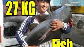 नदिमा बल्छी खेल्दा २७ केजी को माछा पर्यो || Village boys caught big fish in the river