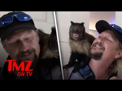 Crystal The Monkey At LAX!  TMZ TV