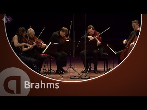 String Sextet No. 1 (Janine Jansen & Friends)