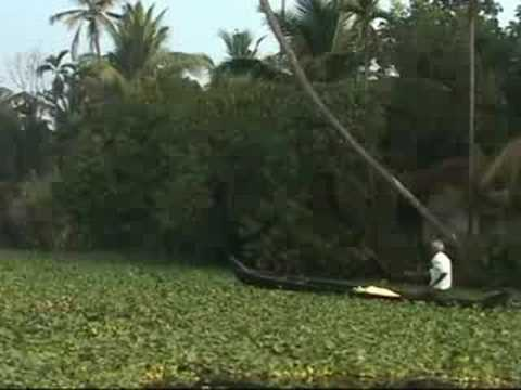 Kerala backwater, India Backpacking Travel Guide by John Benjamin