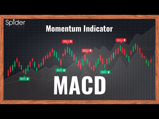 How to use MACD Indicator to make profits in Hindi