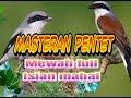 Masteran Pentet Mewah Full Isian  Mp3 - Mp4 Download