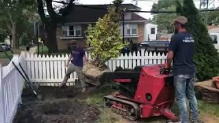Ornamental & Privacy Tree Planting Video