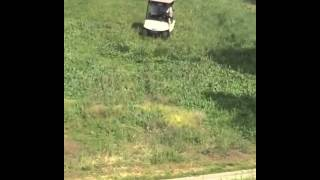 Crazy golf cart crash! II Golf Gods