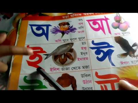 Let's Learn the Bangla Bornamala - Preschool Learning(With Baby)