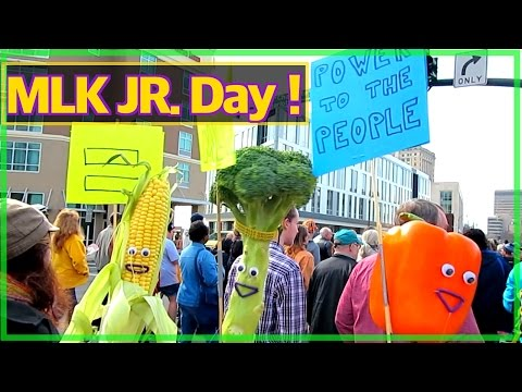 Martin Luther King JR Educational song for kids by the singing vegetable puppet show