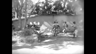 JUNIOR MUNGUS - VIETNAM