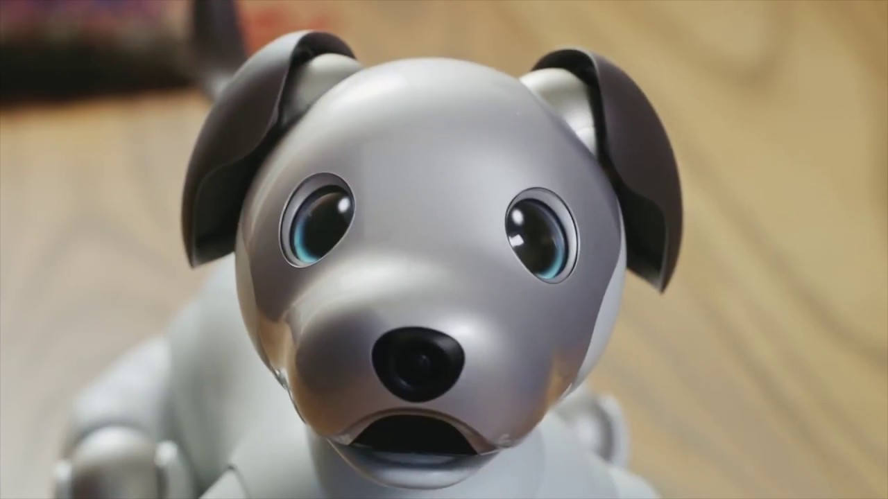 Cool Gadgets - Sony Aibo: The Robot Dog Companion by Ludicrous Gadgets