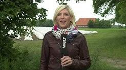 WELT WETTER: Deutschlandweit Regen & Gewitter - außer im Nordosten