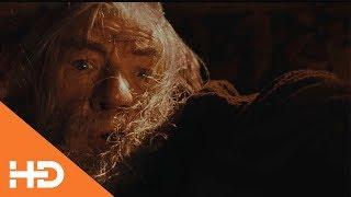 """""""Ты не пройдешь  Гэндальф падает в пропасть. Бегите, глупцы"""" ✦Властелин колец: Братство кольца(2001)"""