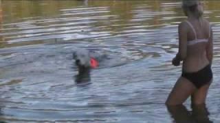 Spike simmar i svartsjön