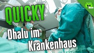DHALU IM KRANKENHAUS 🎮 Quicky #202 | Best of PietSmiet