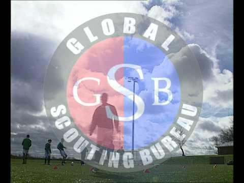 Global Scouting Bureau