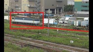 東京貨物ターミナル駅構内を走り抜けていくEF65形が牽引のコンテナ貨物列車