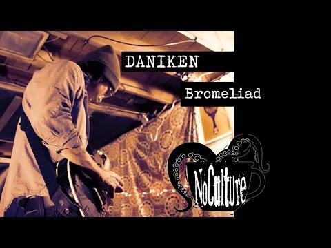 Daniken - Bromeliad | Live @ No Culture